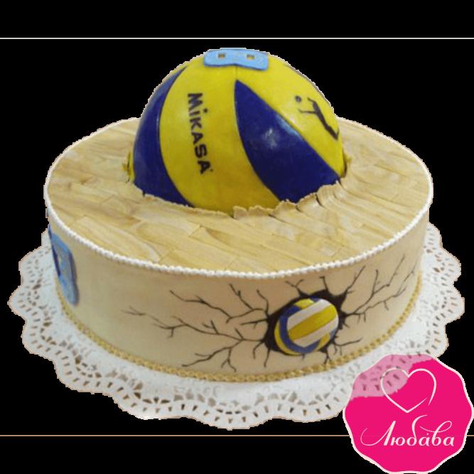 Торт на день рождения для волейболиста №2334