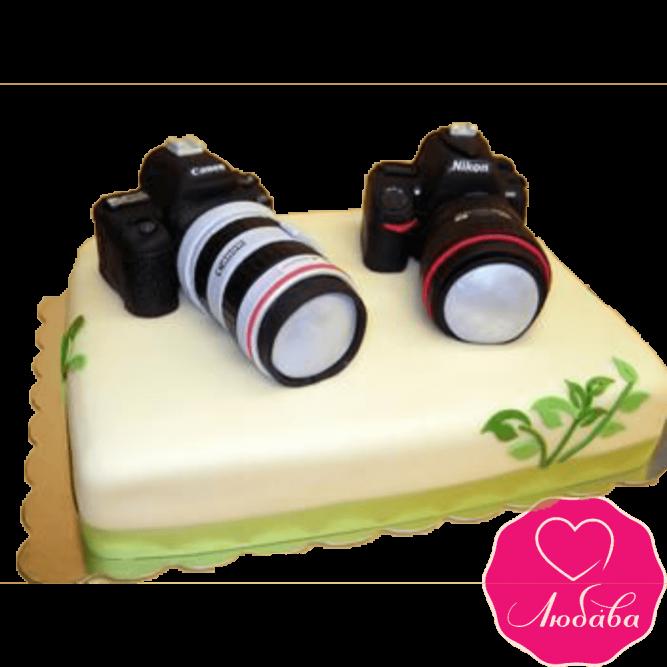 Торт на день рождения для фотографа №2373