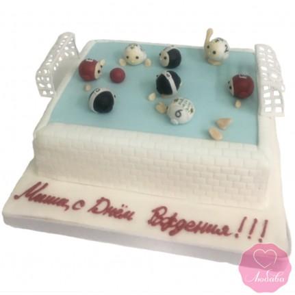 Торт водное поло №2855