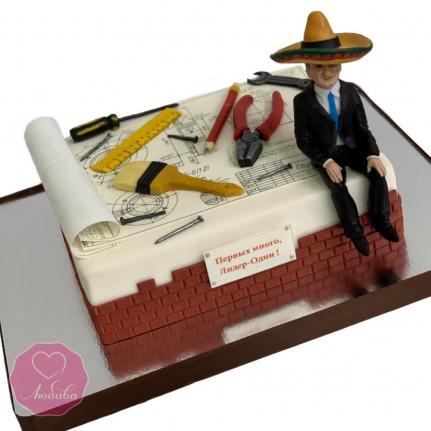 Торт проектировщику №2876