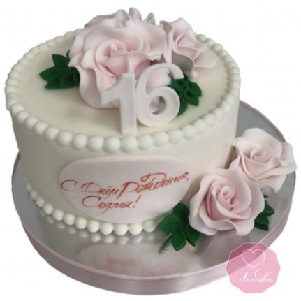 Торт на 16 лет девушке №2880