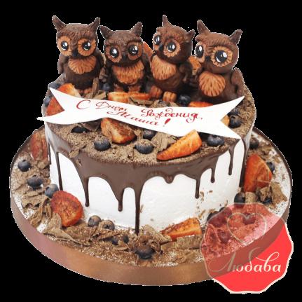 Торт с ягодами с совами №1300