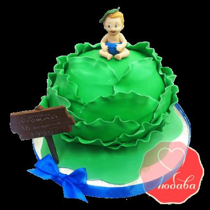 Торт мальчик на капусте №1527