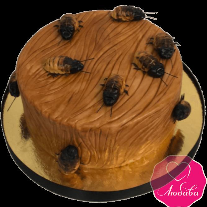 Торт праздничный оригинальный с насекомыми №1991