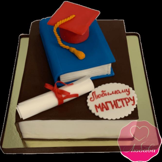 Торт праздничный выпускнику института №2004