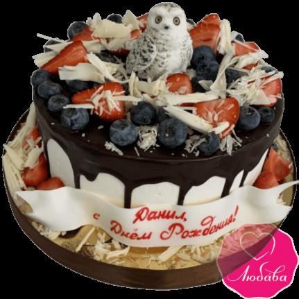 торт детский полярная сова №2104