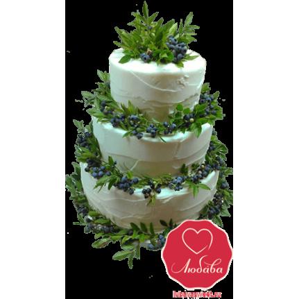 Торт, украшенный черникой №784