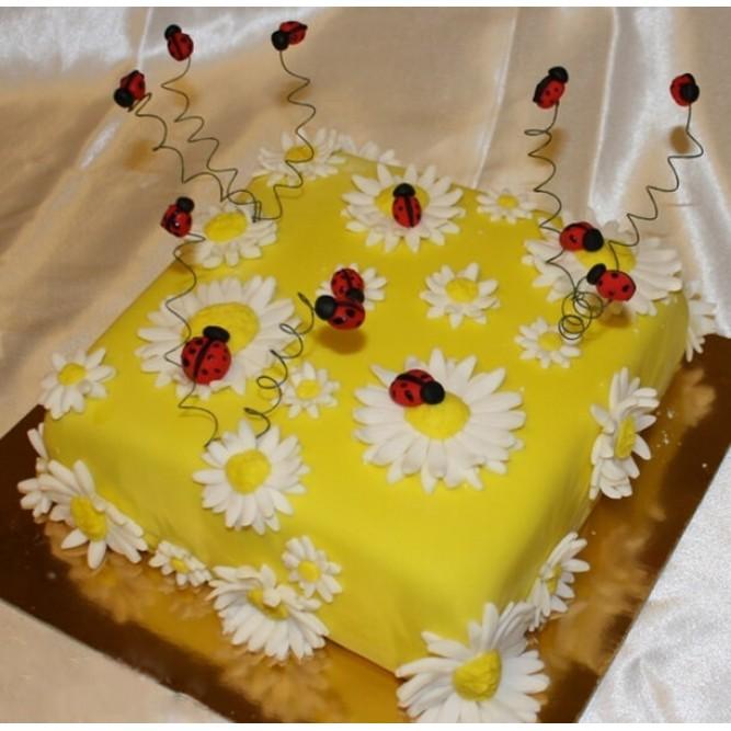 Торт Божья коровка №839