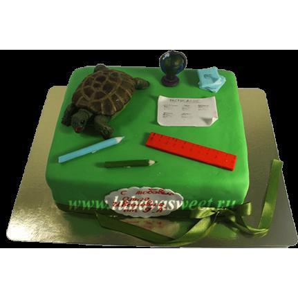 Торт Для выпускников №628
