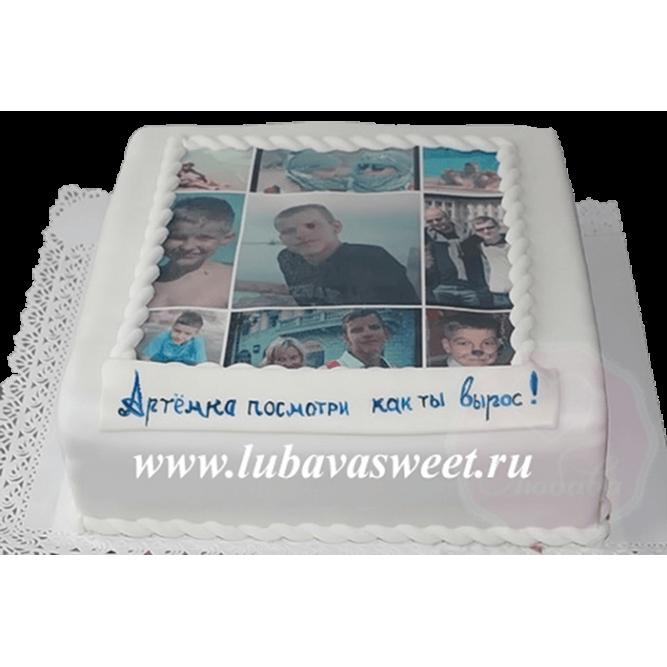 Торт с фотографией №123