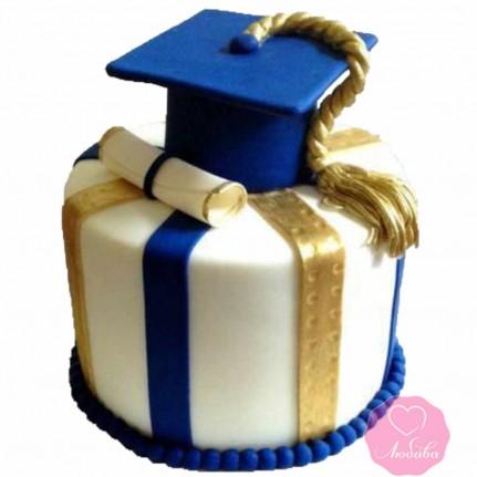 Торт праздничный студенту №2669