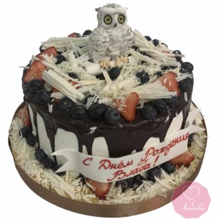 Торт детский с ягодами и совой №2677