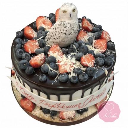 Торт детский ягодный с полярной совой №2689