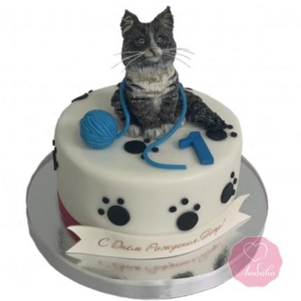 Торт кот №2852