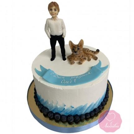 Торт мальчик и кот №2919