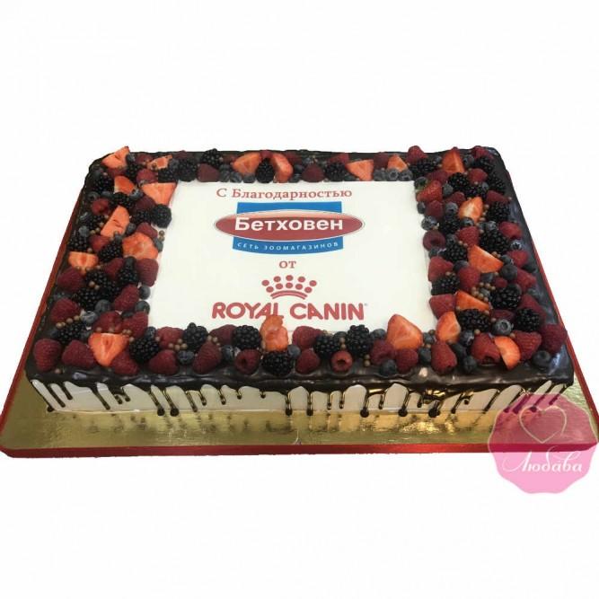 Торт корпоративный для зоомагазина №2695
