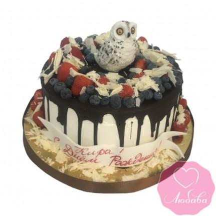 Торт без мастики с совой №2546